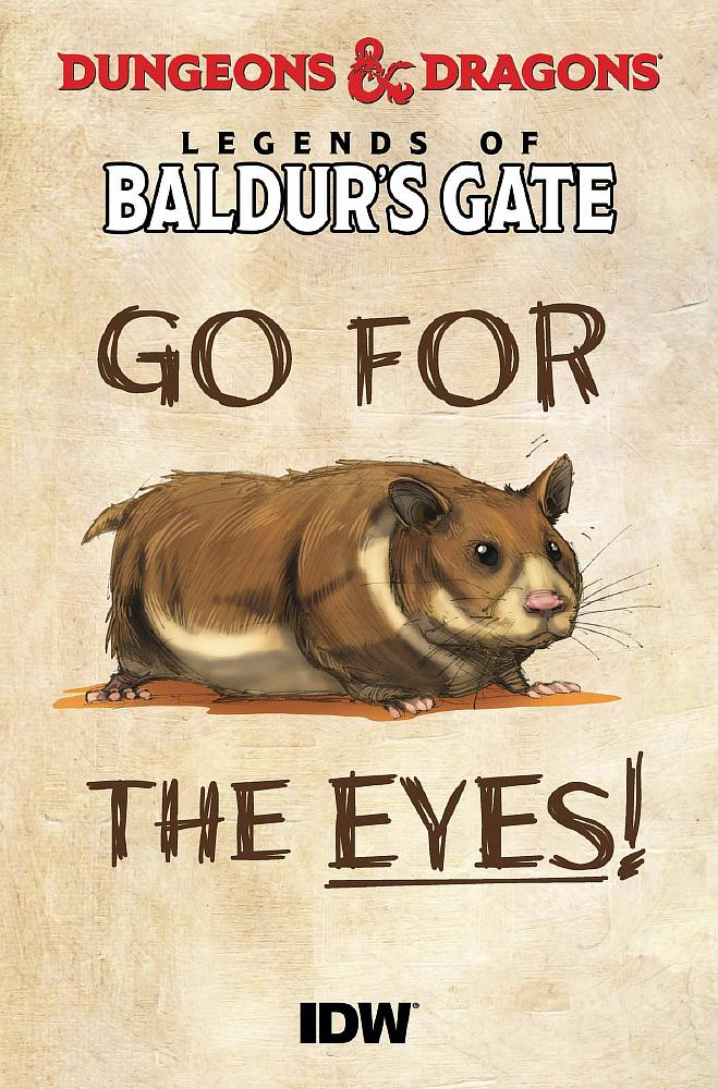 DUNGEONS & DRAGONS BALDURS GATE 100-PAGER